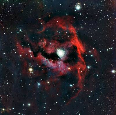 Head Of Seagull Nebula Art Print by European Southern Observatory