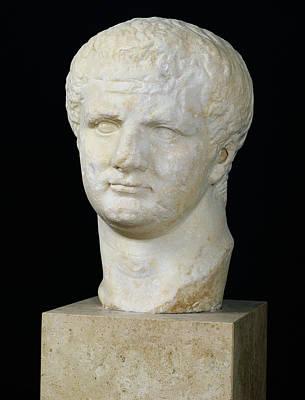 Head Of Titus Art Print