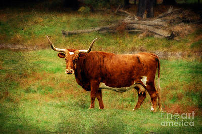 Domestic Animals Digital Art - Heading For The Barn by Lois Bryan