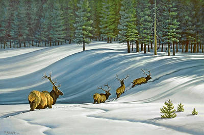 Elk Painting - Heading For Timber - Elk by Paul Krapf