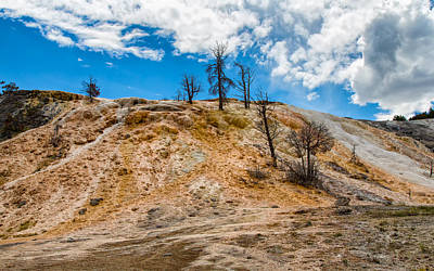 Photograph - Heading To Palette Springs Yellowstone by John M Bailey
