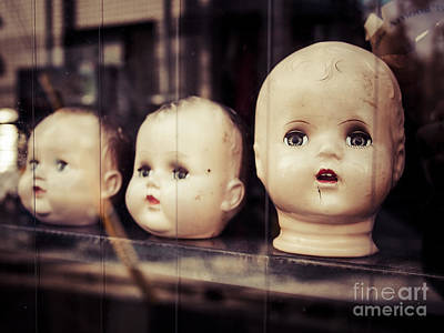 Photograph - Heads by Derek Selander