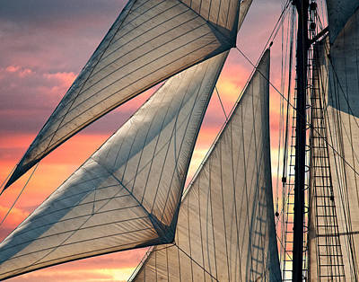 Photograph - Headsails by Fred LeBlanc