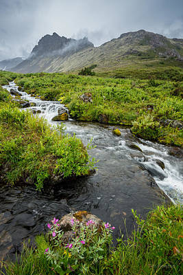 Photograph - Headwaters In Summer by Tim Newton