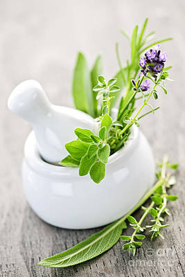 Purple Flowers Photograph - Healing Herbs In Mortar And Pestle by Elena Elisseeva