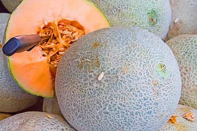 Photograph - Healthy Cantaloupes by Deb Buchanan