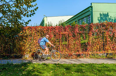 Colourfull Photograph - Healthy Ride by Tgchan