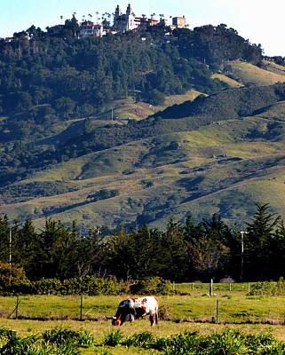 Photograph - Hearst Castle Beef by Jeff Lowe