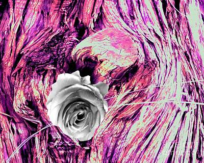 Photograph - Heart Bark Neptune Rose by Marlene Rose Besso