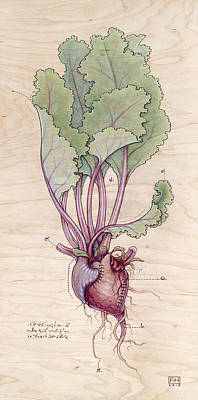 Pyrography Mixed Media - Heart Beet by Fay Helfer