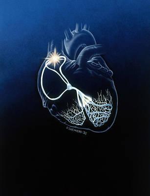 Heart Conduction System Art Print by Bob L. Shepherd