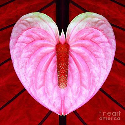 Photograph - Heart Flower Butterfly W Candle by Joseph J Stevens