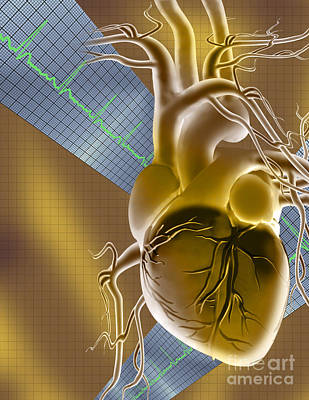 Digital Imaging Photograph - Heart Graph by Mike Agliolo