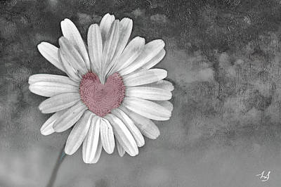 Heart Of A Daisy Art Print