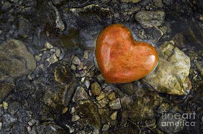 Photograph - Heart Of Gold - D008391-c by Daniel Dempster