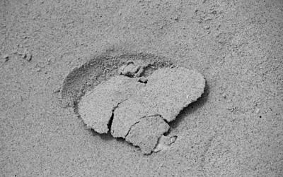 Soil Digital Art - Heart Of Sand by Cynthia Guinn