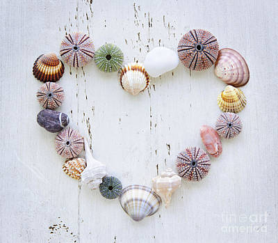 State Word Art - Heart of seashells and rocks by Elena Elisseeva