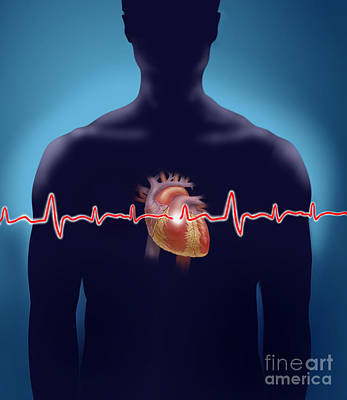 Photograph - Heart Rate by Jim Dowdalls