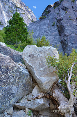 Heart Rock In Yosemite Art Print by Debra Thompson