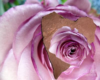 Photograph - Heart Rock Neptune Rose by Marlene Rose Besso