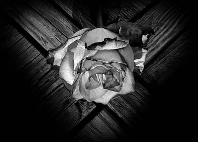Photograph - Heart Rose by Luke Moore