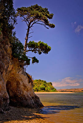 Art Print featuring the photograph Heart's Desire Beach by Janis Knight
