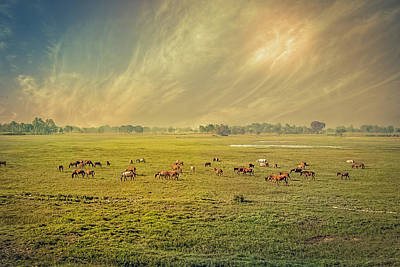 Digital Art - Heat N Dust - Indian Countryside by Sarah Sever