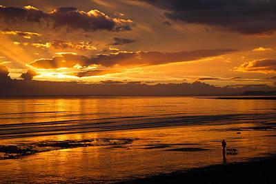 Buy Dog Art Photograph - Heaven On The Beach by Izzy Standbridge