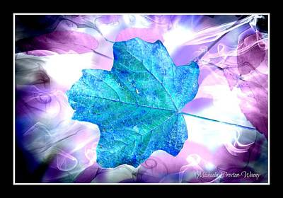 Photograph - Heavenly Leaf by Michaela Preston