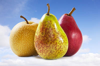 Photograph - Heavenly Pears by Colin and Linda McKie