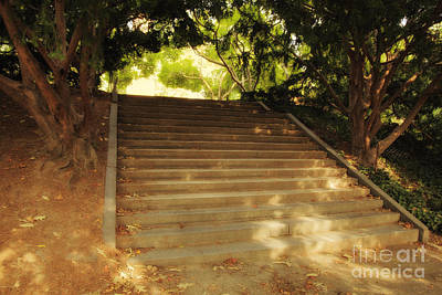 Dappled Light Photograph - Heavenly Stairway by Madeline Ellis