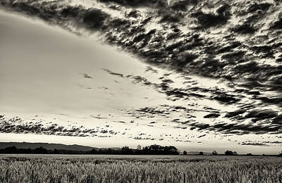 Photograph - Heavenly Summer Sky by Don Schwartz