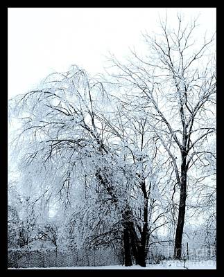 Wrap Digital Art - Heavy Ice Tree Redo by Marsha Heiken