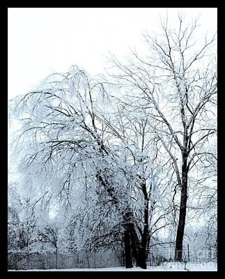 Wrap Digital Art - Heavy Ice Tree Redo by Marsha Heiken