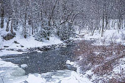 Photograph - Heavy Snow by Alana Ranney