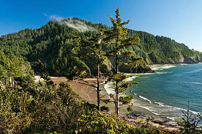 Photograph - Heceta Head 1 by Lara Ellis