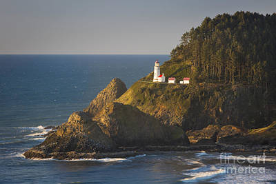 Photograph - Heceta Head Light by Brian Jannsen