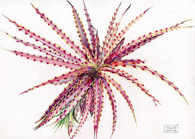 Painting - Hechtia Texensis by Penrith Goff