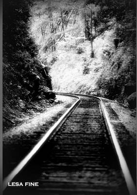 Photograph - Heiga Burrow Railroad Tracks by Lesa Fine