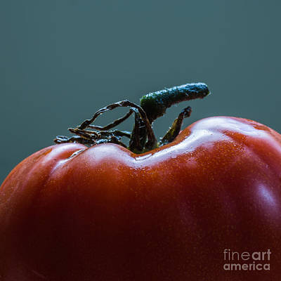 Heirlooms Photograph - Heirloom Tomato Square Format by Edward Fielding