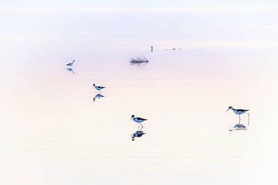 Solitude Photograph - Heiwa I by Peter Tellone