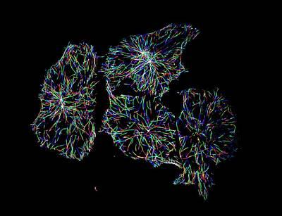 Hela Cells Art Print by Microscopy Core Facility, Vib Gent