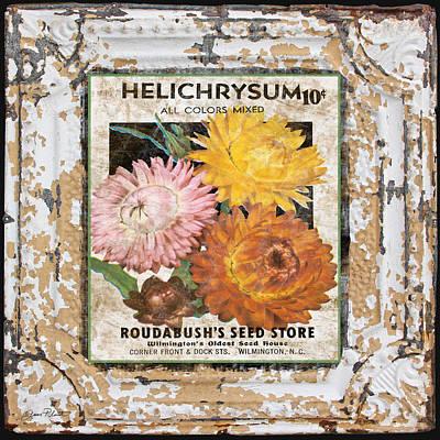 Helichrysum On Vintage Tin Art Print