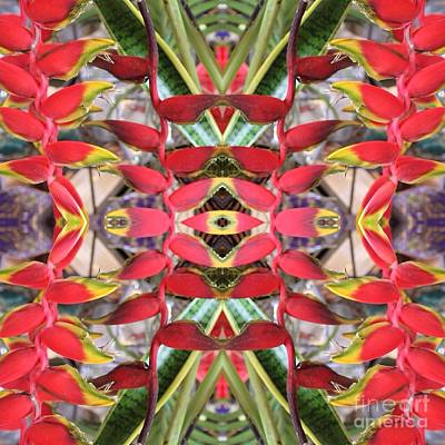 Photograph - Heliconia Kaleidoscope by The Art of Alice Terrill