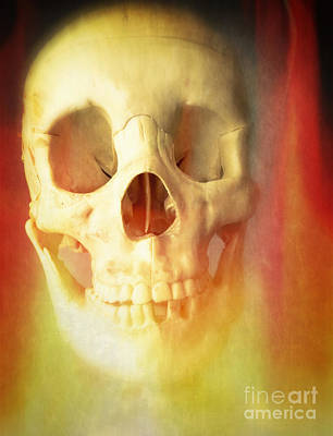 Skull Photograph - Hell Fire by Edward Fielding