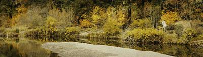 Hello Autumn Panorama Art Print by Diane Schuster