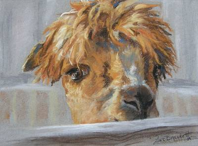 Hello Art Print by Lori Brackett