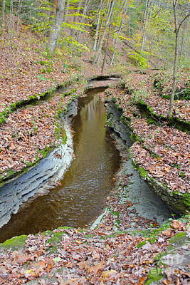 Hell's Hollow Trail 1 Print by Marie Spence