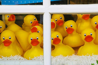 Rubber Ducky Wall Art - Photograph - Help We're Trapped In A Window Display And Can't Get Out by Allen Beatty