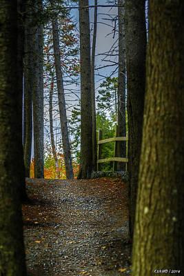 Western Art - Hemlock Ravine Park by Ken Morris